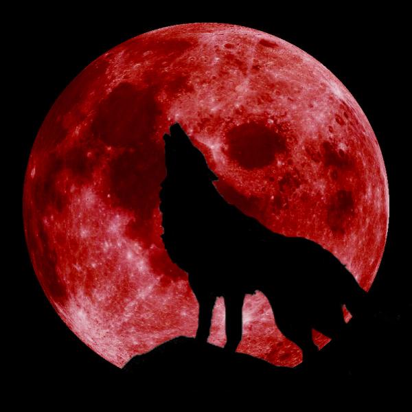 Астрономски календар: 168-иот ден со ноќ со полна месечина