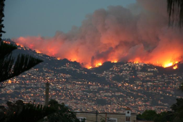 Шумски пожари: Под контрола на Скопска Црна Гора, горат шумите кај Македонски Брод
