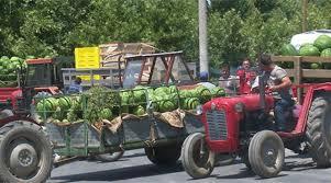 ЧЕСТИТКА ОД ВЛАДАТА ЗА ЗЕМЈОДЕЛЦИТЕ: Продажбата на земјоделски производи намалена за 4,4 отсто