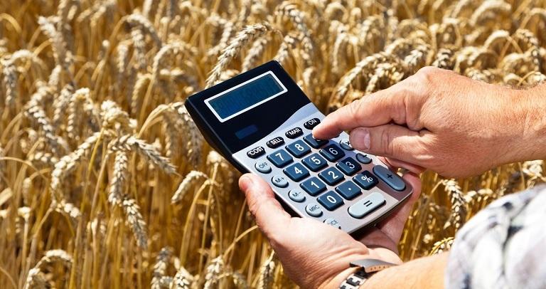 Бабовски: Исплатени 99 отсто од ланските земјоделски субвенции