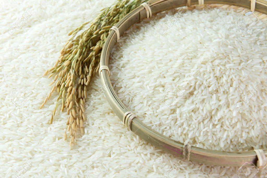 Облешевци ја почнаа жетвата на оризот: ГМО ни направи лоша реклама и ни ја урна цената