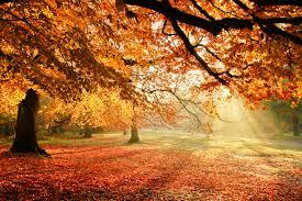 Временска прогноза за 19 октомври: Сончево, температура до 28 степени, во Скопје до 25