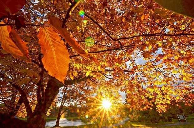 Време: Есенски ден со сонце и 30 степени