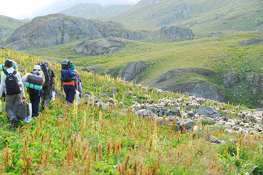 ПЛАНИНАРСКА ДРАМА СО СРЕЌЕН КРАЈ: 49-годишен скопјанец вчера се изгубил на Шар Планина, најден утрово во бачило