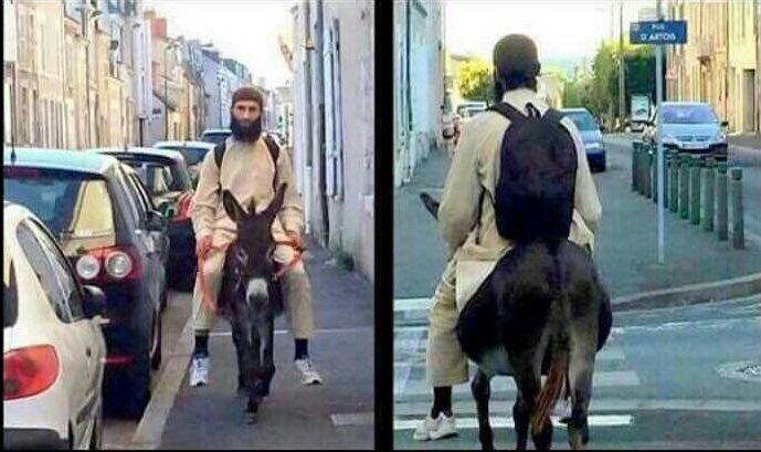 Франција: Муслимански бегалец јава магаре бидејќи западната технологија е непријател на исламот