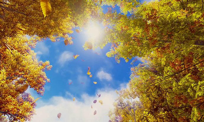 Време: Сончев есенски ден до 22 степени