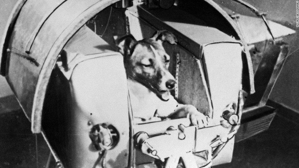 """На денешен ден: Во 1957 СССР го лансирал """"Спутњак 2"""" првиот сателит кој со себе го носел кучето """"Лајка"""""""