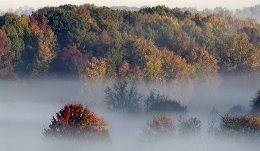 Време: Изутрина на места магливо, потоа сончев есенски ден до 24 степени