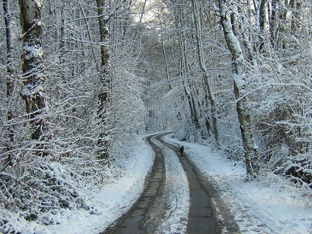 Време: Утре дожд во низините и снег на планините