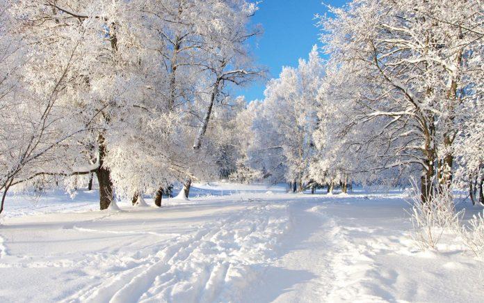 ВРЕМЕ: Новогодишната ноќ со снег и температура под нулата