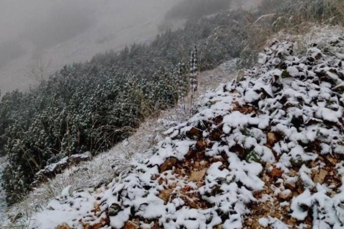 Првите десет дена од јануари во Црна Гора се најстудени од 1949 година
