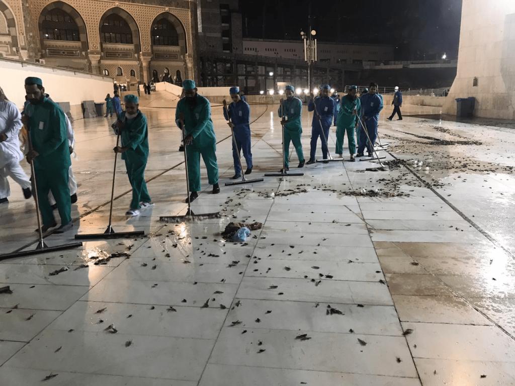 Мека: Наезда од црни скакулци во најсветото место на муслиманите