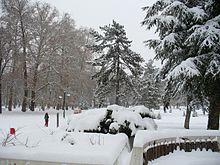 Викендов снег над 20 см