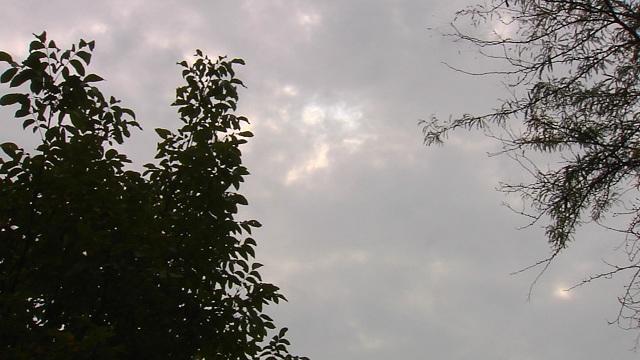 Време: Облачно, со ветер и до 12 степени