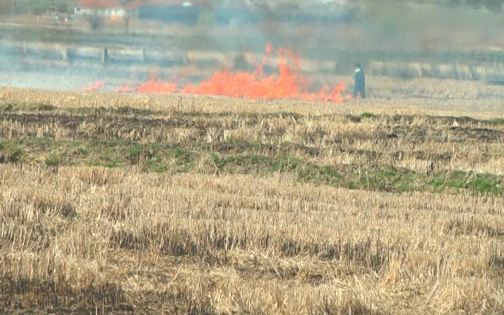 МВР: Жешки казни за предизвикување пожар