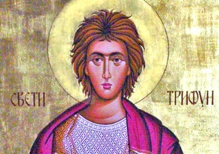 Денеска е Св. маченик Трифун
