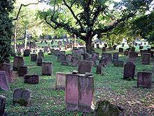 Гробар спасил бебе, живо погребано, зашто се родило со две глави