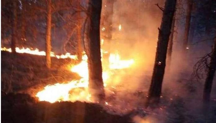 ДОЖДОТ НАЈДОБАР ПОЖАРНИКАР: Го изгасна огнот во Скопско и ја спаси тетовска Долна Лешница