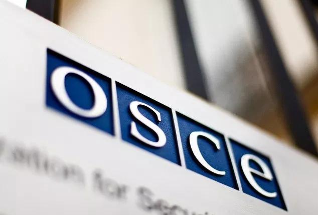 ОБСЕ: Изборите во Украина беа добро организирани, се очекува мирен трансфер на власта
