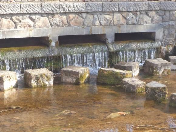 Охрид: Бактерии има во водата од Билјанини извори и е небезбедна за пиење