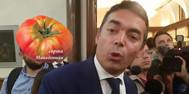 ДИМИТРОВ: Најголема битка за нас е да ги задржиме младите во С. Македонија и да ја направиме европска земја