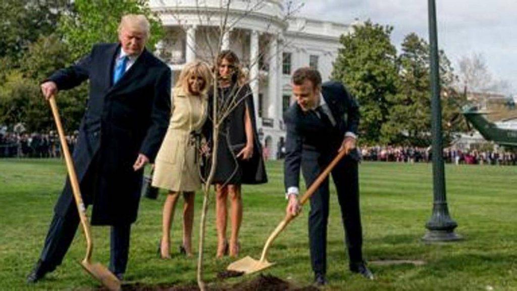 Вашингтон: Се исуши дрвото на пријателството на Трамп и Макрон