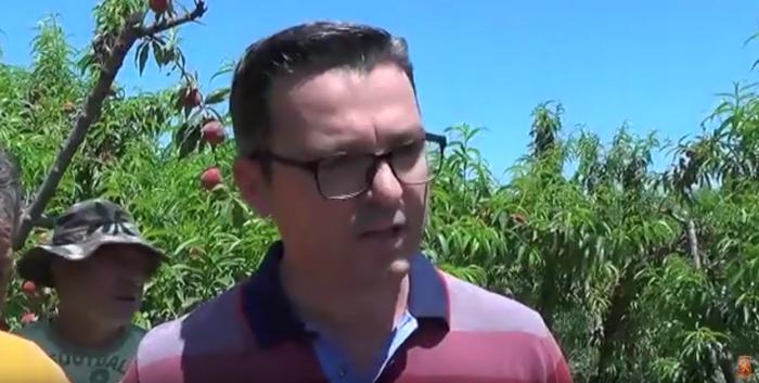 ВМРО-ДПМНЕ: Земјоделците не само што немаат каде да го продадат родот, едноставно не ги ни берат праските