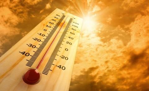 Пекол во Индија: Најмалку 36 починати од екстремно високи температури