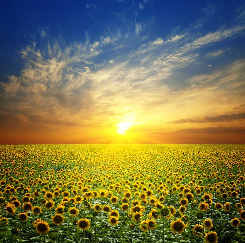 Астрономски календар: Изгрејсонце во 5:32 часот