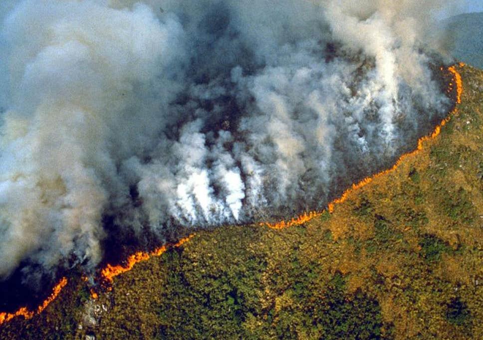 Болсонаро: Бразил нема сили да се бори против катастрофалните пожари во Амазонија