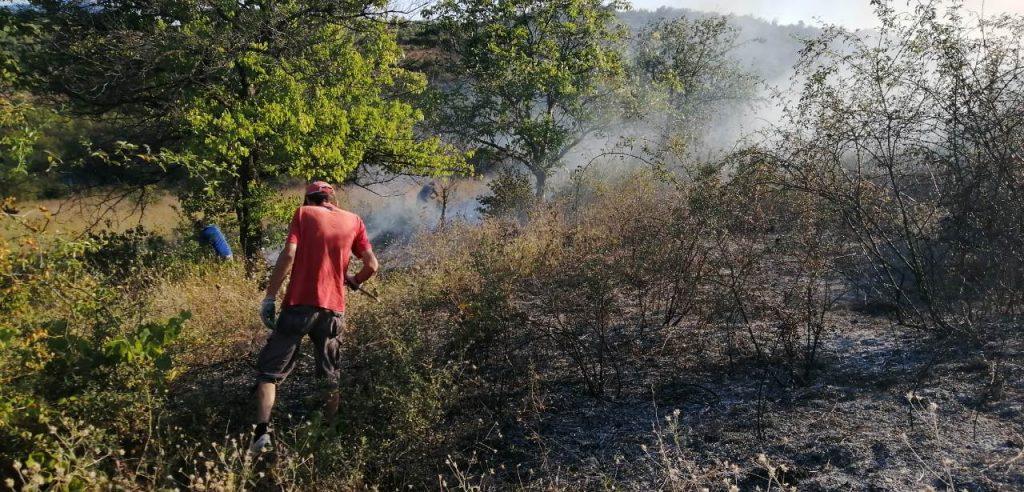 ТППЕ: И авиони помогнаа во гаснењето на пожарот кај Пинтија