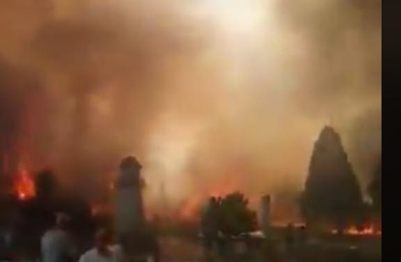 ОЈО: Петмина осомничени за пожарот кај Велес