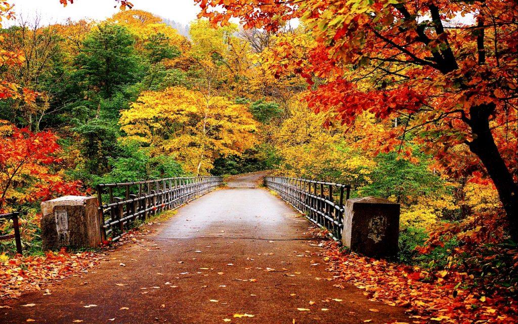 ЛЕТОТО ЗАВРШИ И КАЛЕНДАРСКИ: Прв и прав есенски ден со променливо време