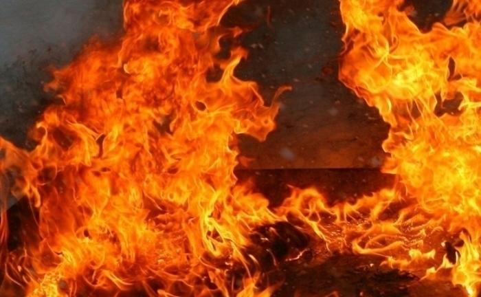 Шумски пожар во Кичевско: Огнот беснее над Колибари, гаснат пожарникари и се чекаат авионите