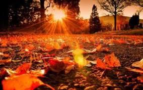 Време: Сончев и свеж ден