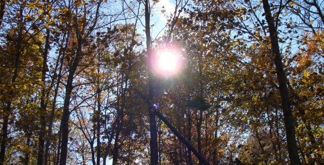 Време: Сончев и топол есенски ден до 27 степени