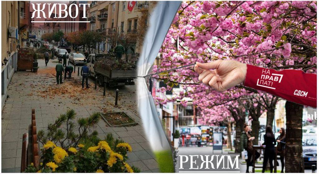 (фото) ИСЕЧЕНИ ЈАПОНСКИ ЦРЕШИ: Од дрвјата во Скопје само Југодрво и Дрводекор се отпорни на пилите и секирите од Петре Шилегов