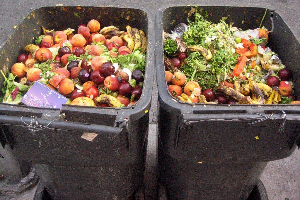 ФАО: Македонија на 8 место во светот во фрлање храна, а за 460.000 жители нема доволно секој ден