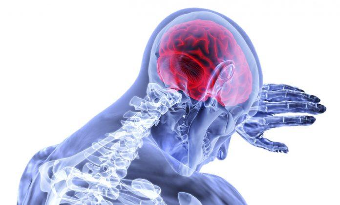 Исфрлете ги од исхраната: Овие намирници се штетни за здравјето на мозокот