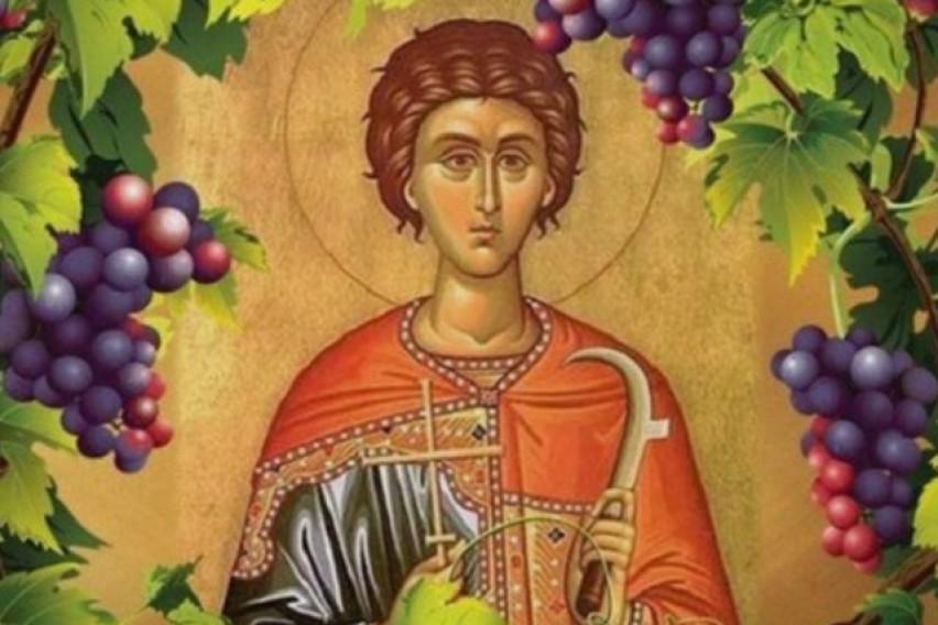 УТРЕ ГО СЛАВИМЕ СВЕТИ ТРИФУН: Исцелител кој е заштитник на лозарите и на градинарите