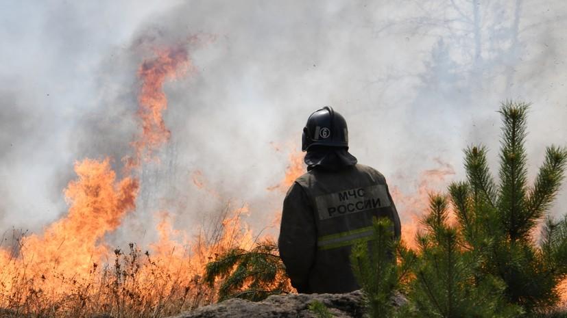 Големи шумски пожари во Русија: Вонредна состојба е прогласена во неколку области