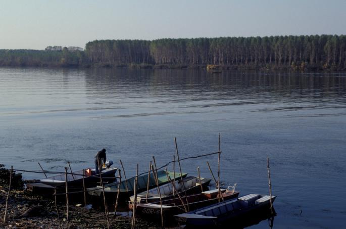 Трагично капење: Се удавија 8 деца во река во Кина