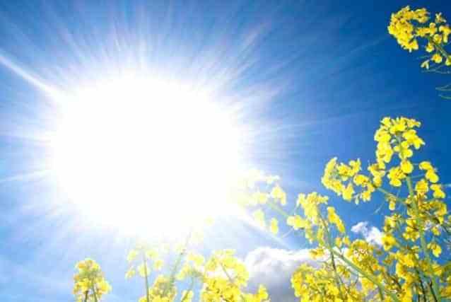 Време: Сончево и топло, со мала облачност и температура до 29 степени