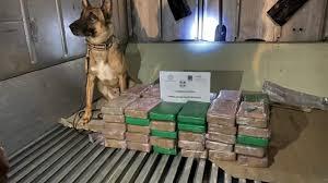 Грција: Куче откри 70 кг кокаин во контејнер со банани