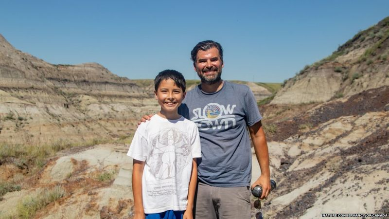 Аматерско истражување: Дете пронајде редок скелет на диносаурус во Канада