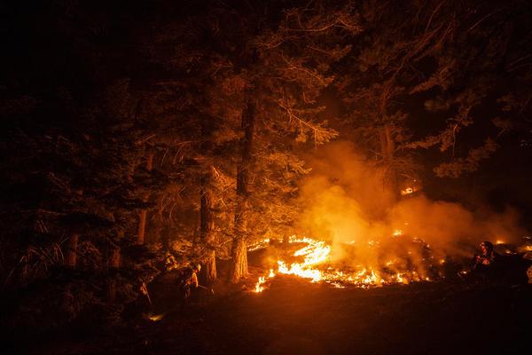 САД: Во Колорадо гори шума од 800 квадратни километри