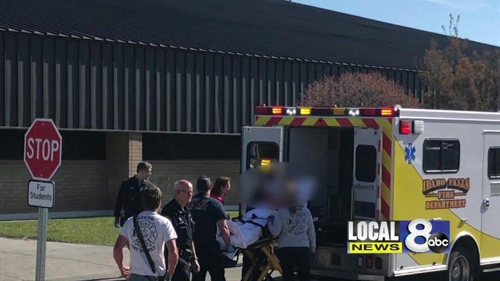 СО ПИШТОЛ ВО УЧИЛИШТЕ ВО САД: Девојче од 6-то одделение застрела двајца ученици и чуварот