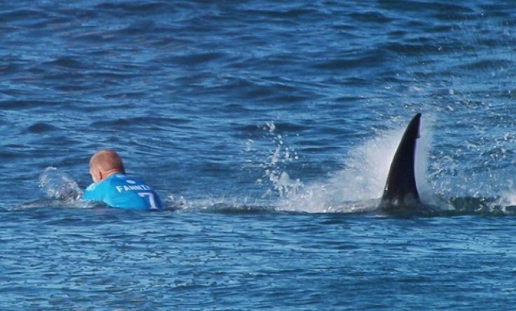 Напад од ајкула во Австралија: Сурфер утрово почина по нападот во Нов Јужен Велс