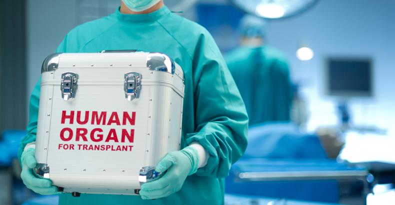 МЗ: Благодарност до сопругот и децата на жената донор на органи со кои се спасени три животи