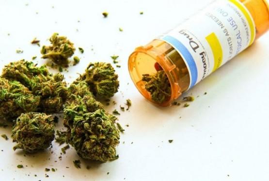 АРСОВСКИ: Целта на Владата е да се овозможи извоз на сув цвет од марихуана од нашава земја